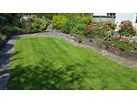 Fully qualified gardener for Greater Belfast area