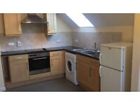 Newly decorated 1 bed flat NO DEPOSIT