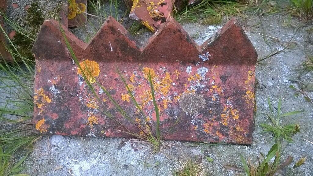 Dragons Teeth Ridge Tiles In Holsworthy Devon Gumtree
