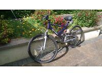 RALIEGH QUICKSAND BICYCLE