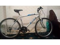 Newish Bike, Only ridden a few times in great condition must see, very cheap!