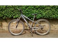 Boy's Mountain Bike, Raleigh Freeze, age 6-13