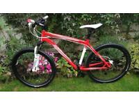 Specialized Rockhopper Sl Bike