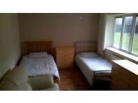 Room in Stepney Green