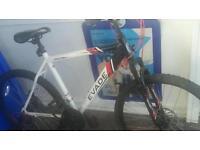Apollo mens bike