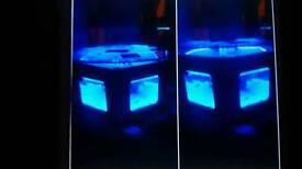 Coffee table glass fish tank