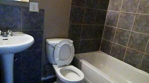 Newly renovated 2BD for just $1085 plus free internet!!! SD $350 Edmonton Edmonton Area image 1