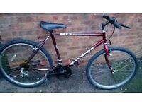 "men's raleigh nitro bike 26"" wheels"