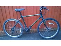 Raleigh Outland...Mans Mountain Bike..... A reliable ride for only £46.00. One of our value bikes