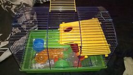 hamster cages new pics