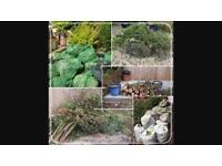 Green waste removal and landscaping solutions