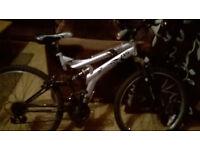 Adult Dunlop Mountain Bike Used