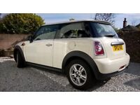 Beautiful mini first for sale...