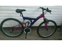 Ladys mountain bike