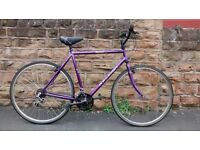 RALEIGH PIONEER CLASSIC HYBRID CYCLE