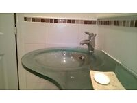 Designer glass sink