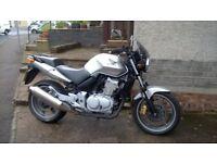 Honda cbf500 05plate