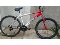 Terrain bike