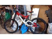 Bergamont downhill / freeride mountain bike