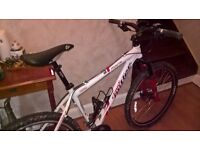large mountain bike for sale disk brakes front shok good condition