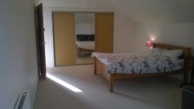 large room to rent in a spacious 5 bedrooms house