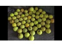 Approx 60 Yellow golf balls