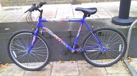 Maxima Hype Mountain Bike only £55