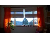 Bright, warm 1 bed flat with sea views, want to exchange for 1 or 2 bed flat in Manchester