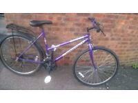 """ladies universal rampage bike 26"""" wheels"""