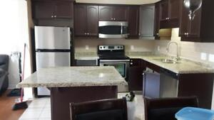 Granite, Quartz countertop best deals measurement today install tomorrow!!!