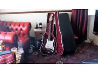 Mexico Fender Stratocaster with hardcase