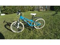 Dawes Redtail kids mountain bile