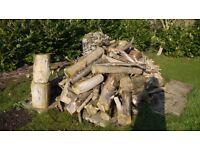 Pile of seasoned Monterey Cypress wood