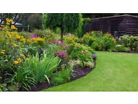 PRO GREEN LANDSCAPING - landscaping and gardening