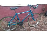 SELECTION OF WORK BIKES CHEAP