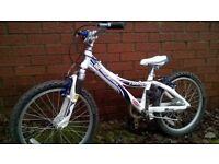Trek 60 Mountain Track Kids Bike