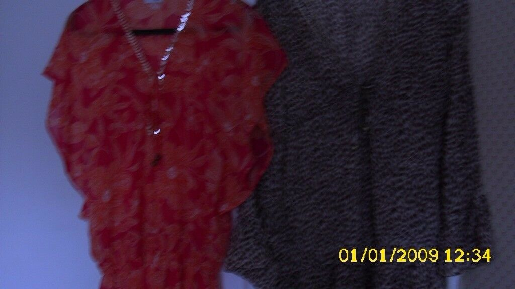Two Ladies Tops chiffon one animal print one floral