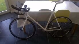 Single speed fixie for sale