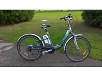 windsor electric bike