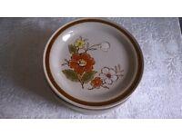 Stoneware Tea Plates, Set of 7