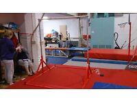 Adjustable Gymnastics Bar