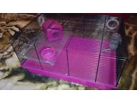 cage for a hamster