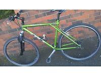gt timberline mountain bike (bargain)