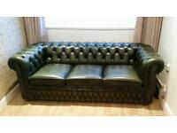Green chesterfield sofa bed