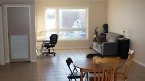 Spacious Student Rental Perfect Off-Campus Housing @ 41 Columbia Kitchener / Waterloo Kitchener Area image 3