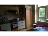 Lovely double bedroom with garden view well located in quiet and typical edinburgh flat £400/m