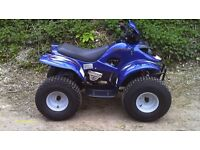 100 cc Quad Bike