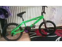 BMX Raleigh bike brand new