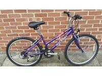 Raleigh girls bike.
