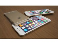 Apple IPhone 6 Gold 64GB Unlocked With Warranty